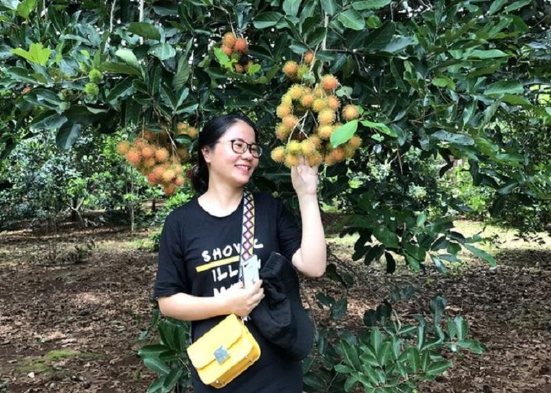 trái cây đồng nai