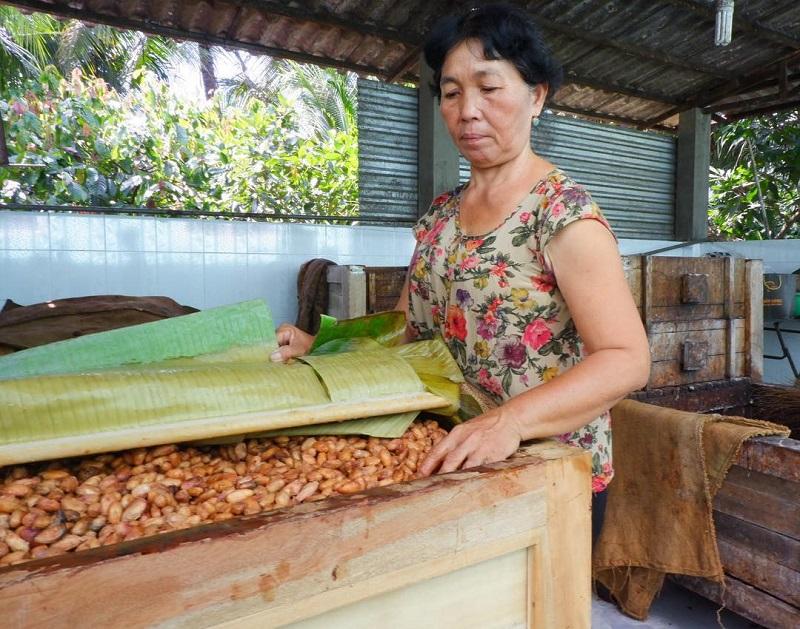 trại nuôi ong bến tre cồn phụng
