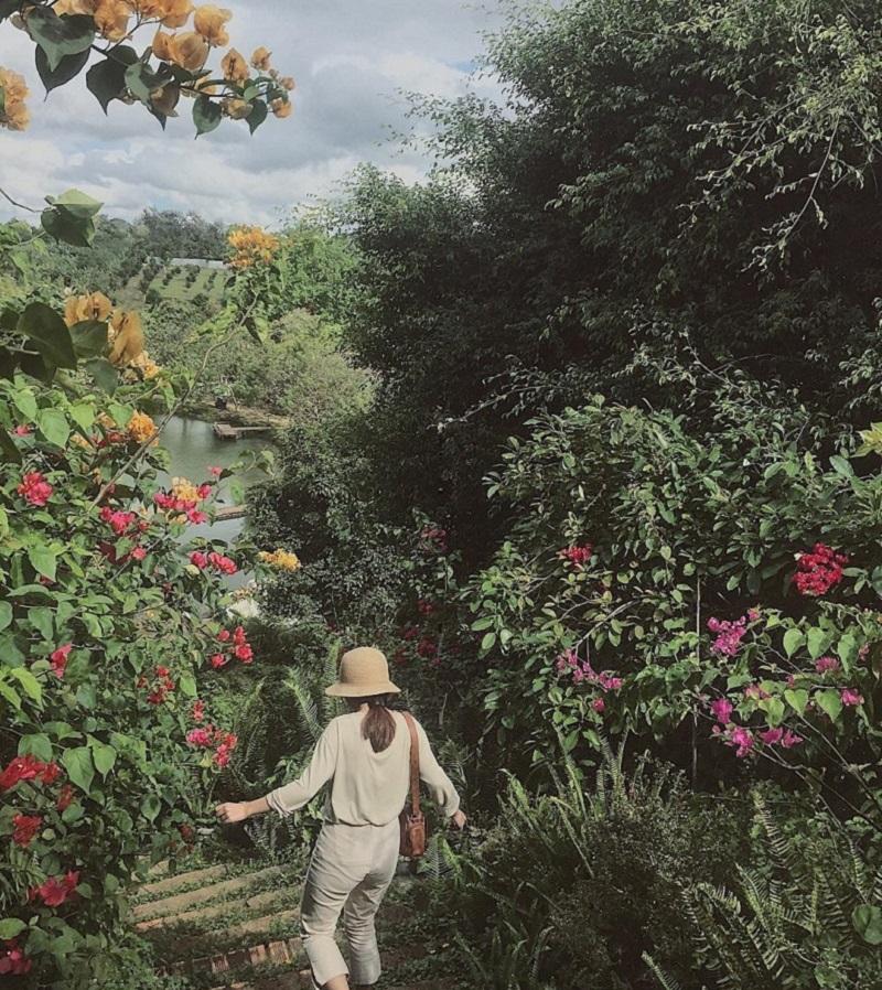 phong cảnh khu du lich kotam